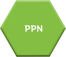 Public Participation Network (PPN)